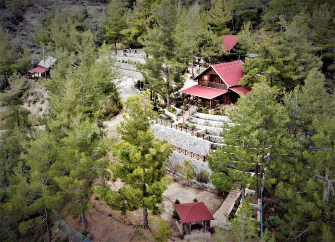 3 Chalets (total of 8 bedrooms) near Troodos