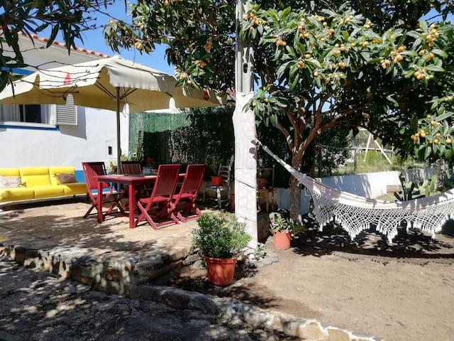 Pedro's-Cozy typical Algarve house