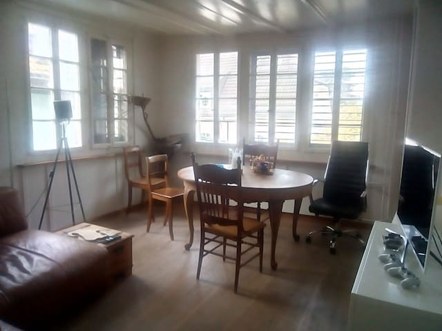Private room in shared flat in Zürich Wollishofen