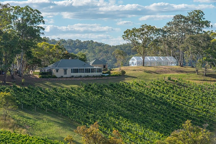 Spectacular vineyard homestead with views!!