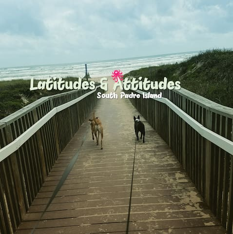 Steps from the beach! Pet Friendly! Sleeps up to 8 - South Padre Island - Lejlighedskompleks