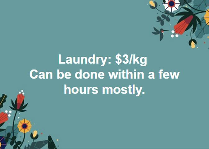 Laundry $3/kg, Dry cleaning will be a bit more expensive. Pricelist for each item to be drycleaned is in the room.