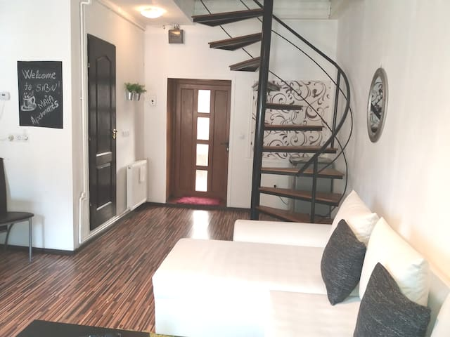 Nice apartment in historical center