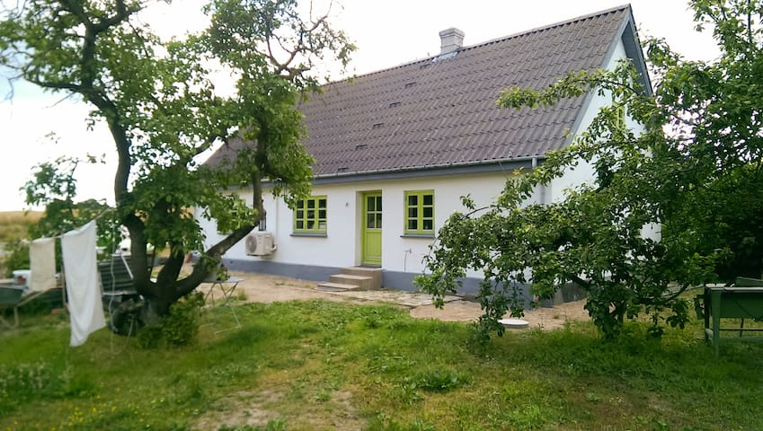 Nostalgi, kunst og hygge - Tranekær - House