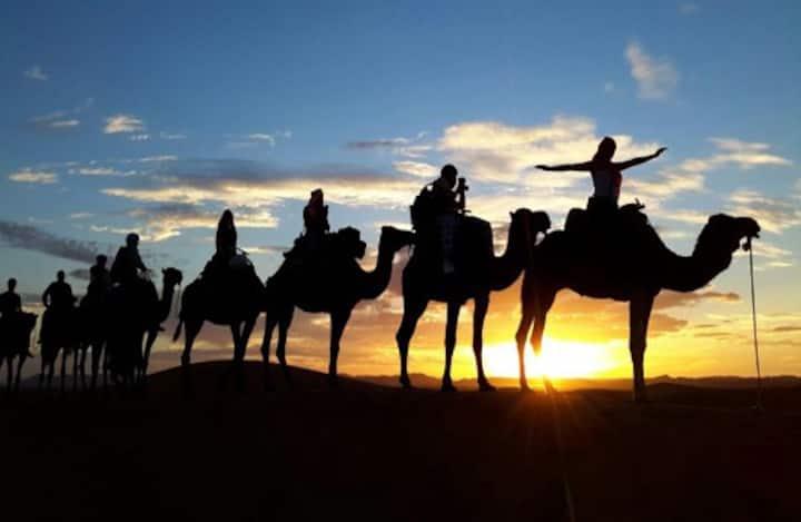 Overnight trip by camel to the zagora desert