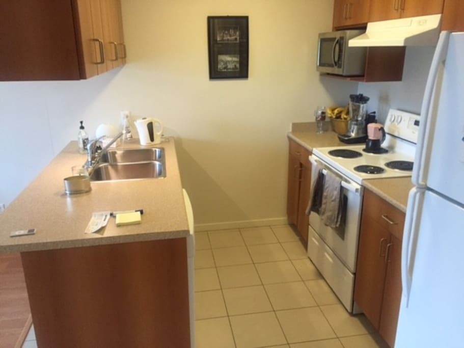 Full kitchen area. Use of stove, fridge, microwave, dishwasher and food prep area.
