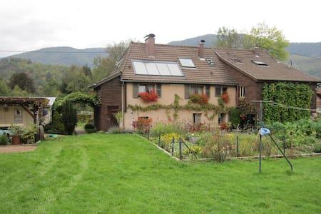 Au Schliffels - Fellering - Apartmen