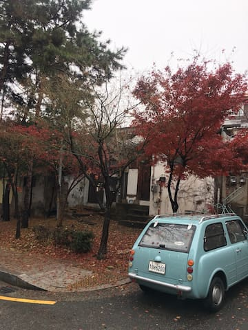 Sajik 1920, Winter in Seoul