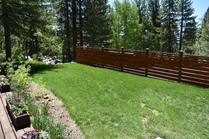 Front yard (partially fenced for privacy)