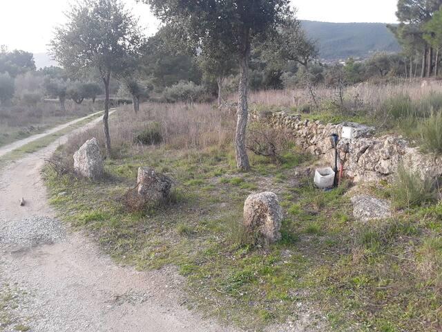 Camping plot near Vale de Prazeres