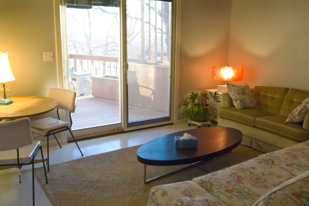 2nd bedroom or living room downstairs with deck and seating. mini frig, hot plate, coffee pot