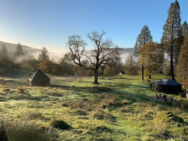 Rydal Y1 - Cosy Traditional Yurt in lush parkland