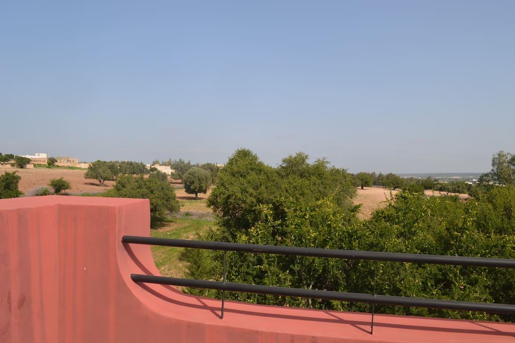 paysage alentour de la terrasse