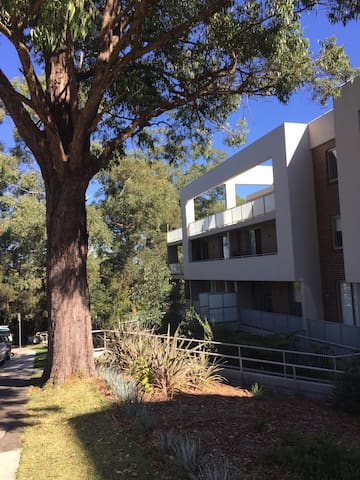 Leafy outlook and spacious rooms - Turramurra - Appartement