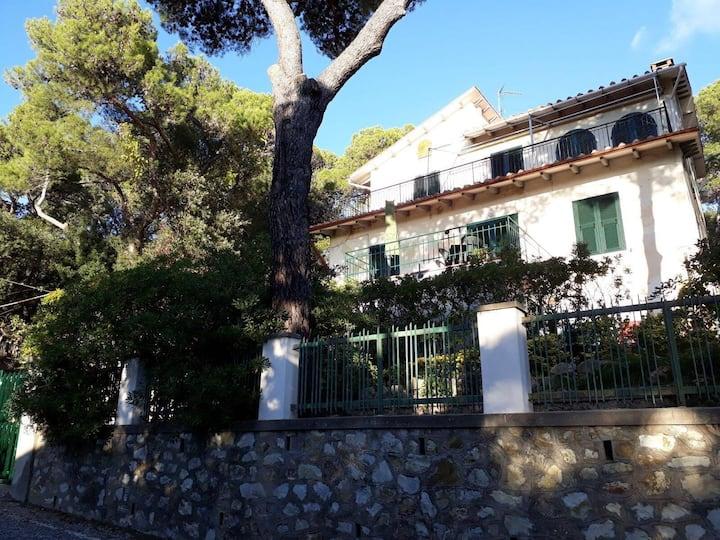 Casa lungo la Costa degli Etruschi, Livorno