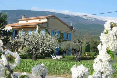 Holiday home on south slope of Mont Ventoux. - Bédoin - 度假屋