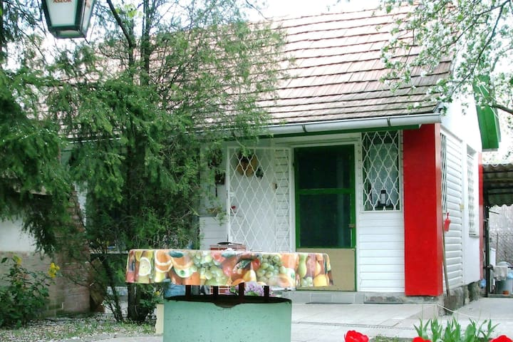 Family Holiday Home - Szentendre - Huis