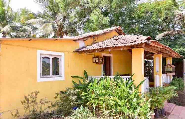 Authentic Goan homestay with scenic field views 🌾🍃