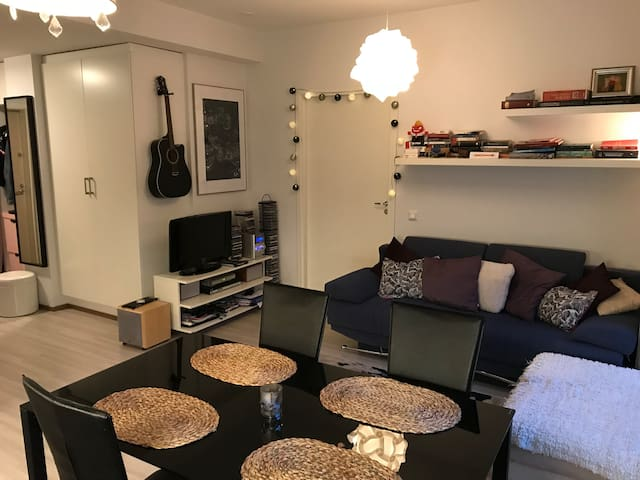 Cozy apartment in charming area 20 min from center