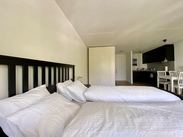 Plenty of space, to dress, sleep, eat and relax. You can have a morning off and enjoy the room.