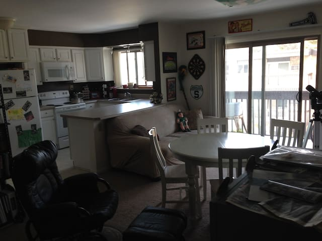 Spacious apt/room near downtown EL - East Lansing - Appartement