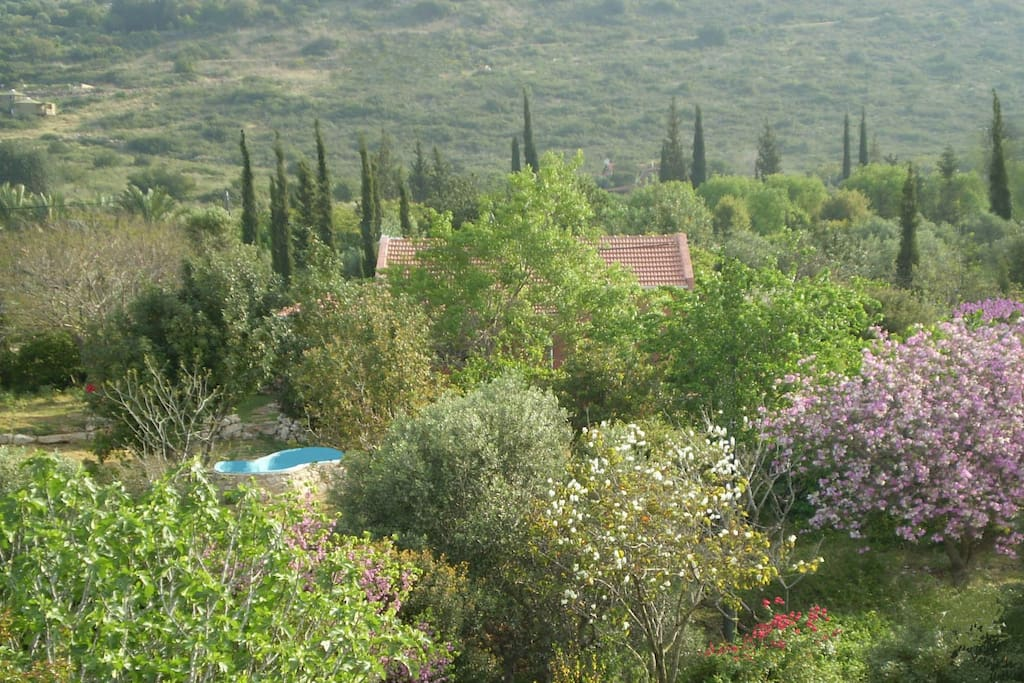 Villa Adama, the small pool and an endless landscape around