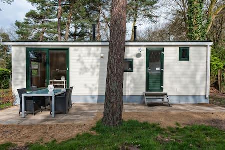 Familiechalet in 't bos (4 pers.) - Oisterwijk