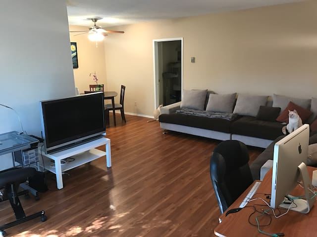 Entire Apartment in Great Location - Los Angeles - Apartment