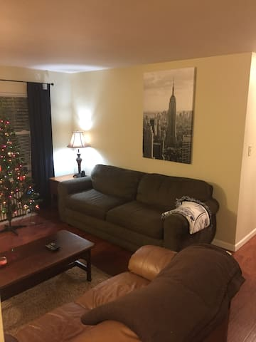 Clean, cozy, and close to downtown - Springfield - Apartment