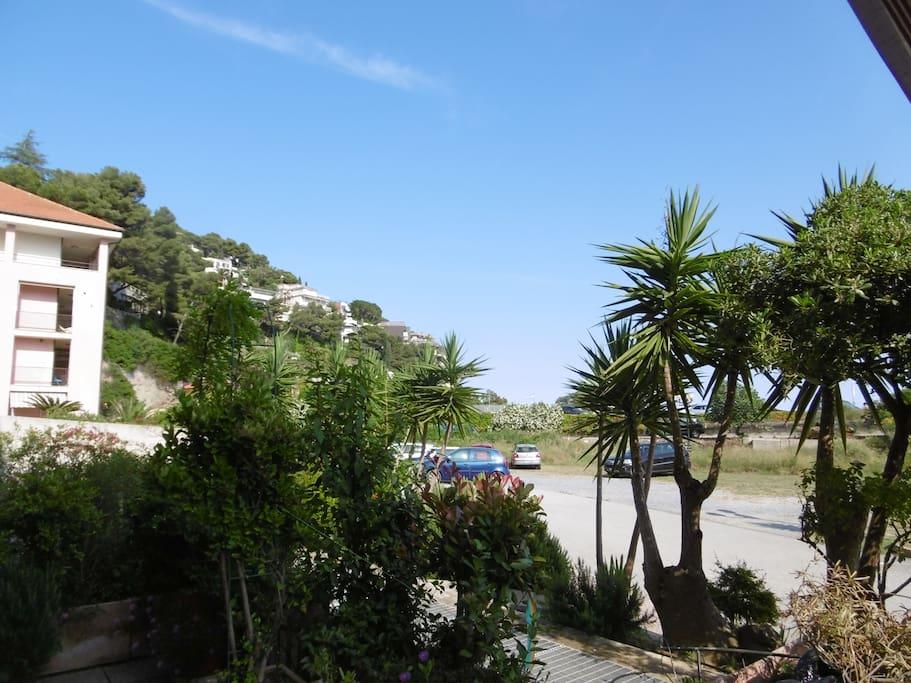 La casa è nel verde, la spiaggia è di fronte