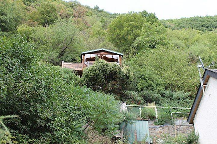 Baumhaus-Träumen in Bäumen - Boppard