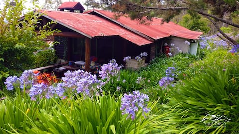 Cabaña Ciguita Constancera, Villa Pajon Eco Lodge