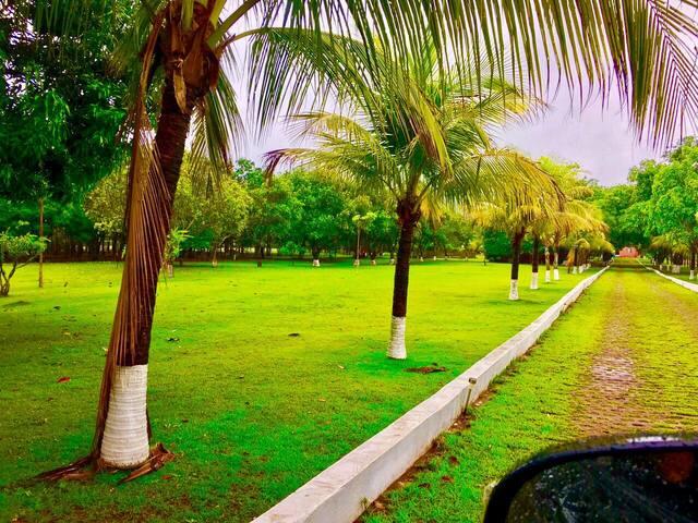 Descanse junto à natureza - Santo Antônio  - Inap sarapan