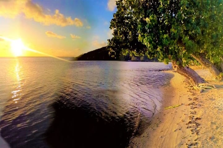 ✿ Charming ✿ private ✿ mangrove at 50m ✿ authentic