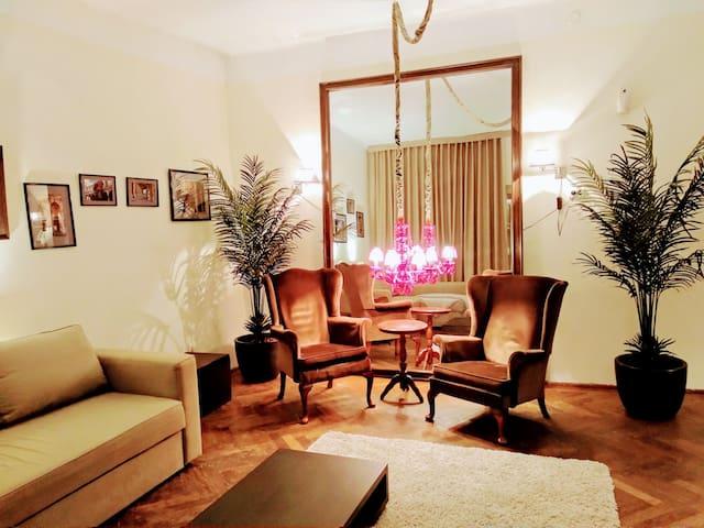 Charming Vintage Apartment Piata Sfatului