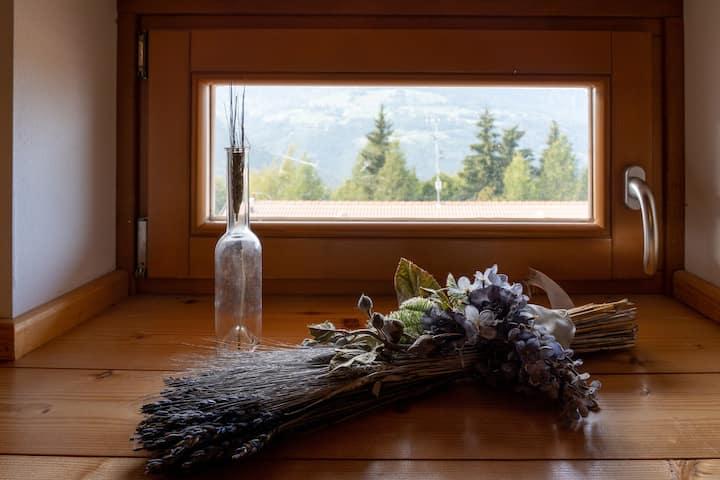 Intero appartamento in alta montagna - Polsa