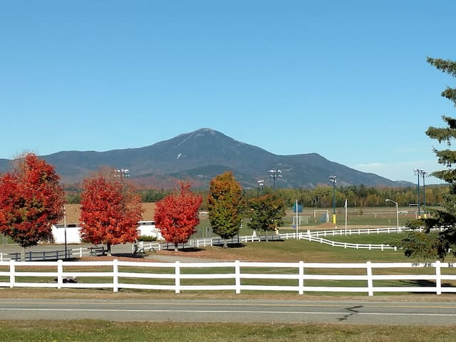 Cozy Apartment with Whiteface View - Lake Placid - Daire