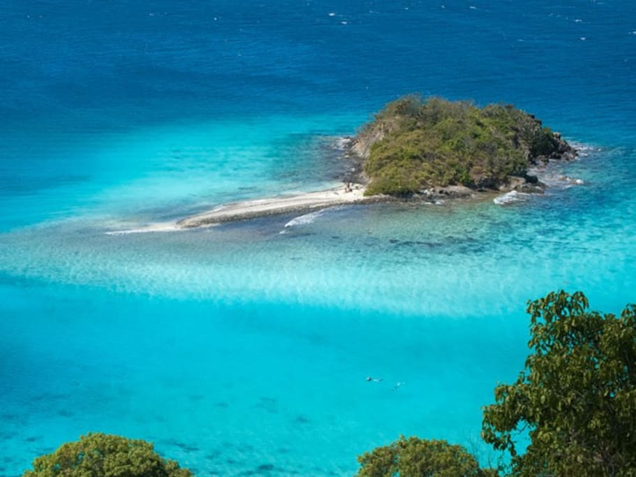 This is waterlemon cay! It is a great snorkeling place which you can walk to on a trail.