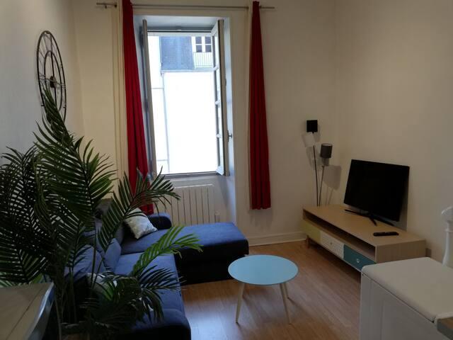 Appartement rénové en plein centre historique