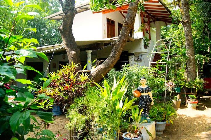 Sigiri Tarushan Homestay B&B - Sigiriya
