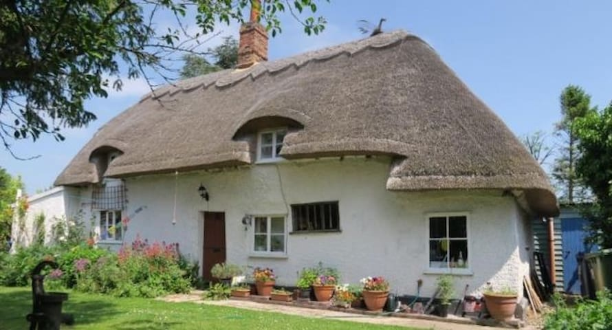 Entire Thatched Cottage - Melbourn - Casa