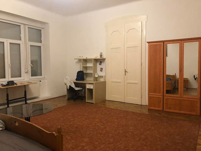 huge comfortable room in city center budapest