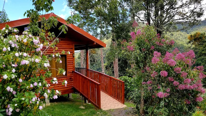 Quaint Cabin 5, great value in San Gerardo De Dota