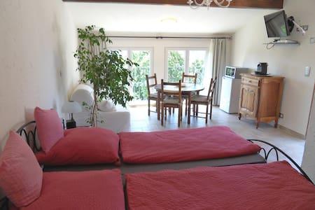 Lacigale Provence Meounes - Méounes-lès-Montrieux - Bed & Breakfast
