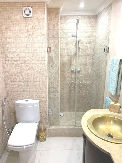 Salle de bains / Bathroom Remarque / Remark : toilette avec douchette pour nettoyage intime / toilet with hand shower for intimate cleaning.