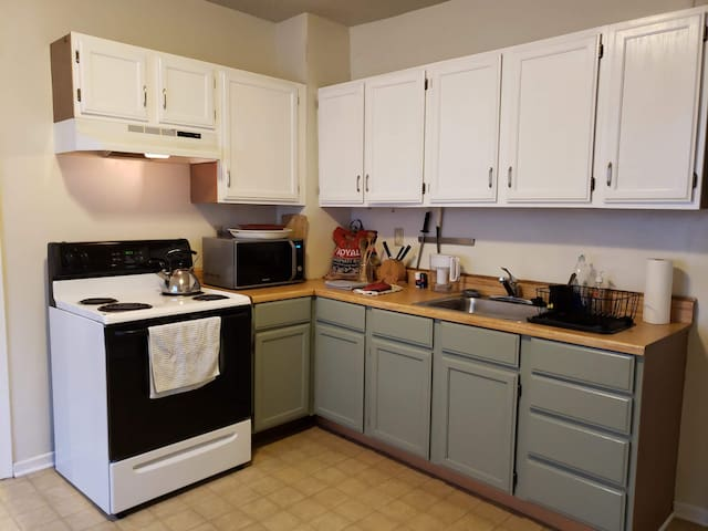 Large/Bright 2 bedroom in the Heart of Hamtramck