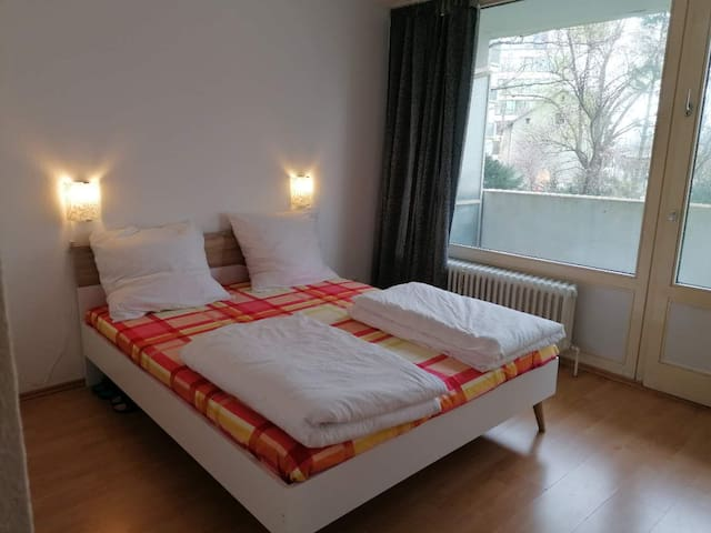 Offenbach City apartment-double room