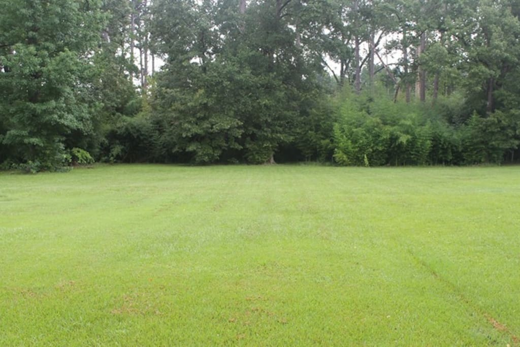 1 acre back yard {lawn service provided}