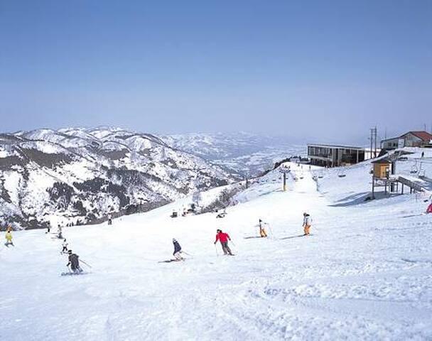 苗場スキー場 No,6 NAEBA ski&snowboard