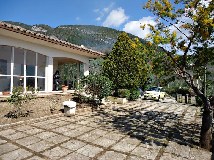 Hillside villa & olive grove